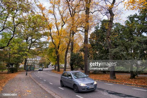 traffic at kaiser street on an autumn day,baden baden. - emreturanphoto stock pictures, royalty-free photos & images