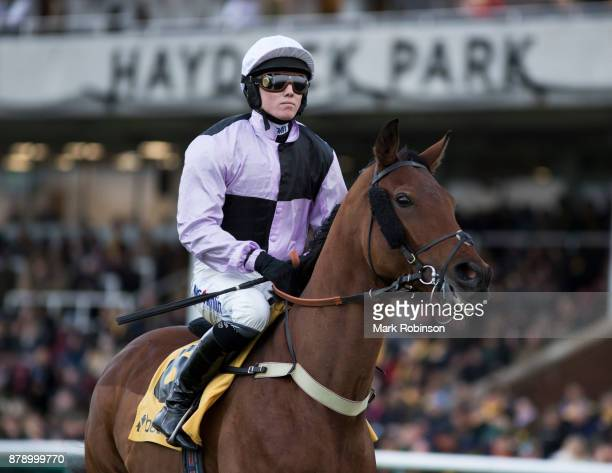 Traffic Fluide ridden by Joshua Moore in the Parade Ring before the Betfair Chase on November 25 2017 in Haydock England