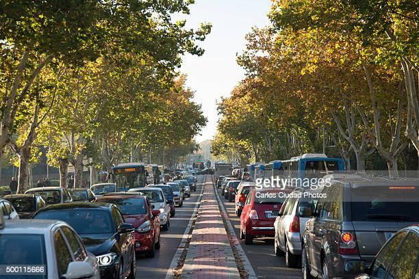 Traffic jam in Ciudad Universitaria, Madrid