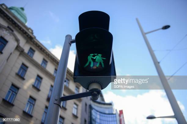 Traffic lights for couples in love are seen in Vienna