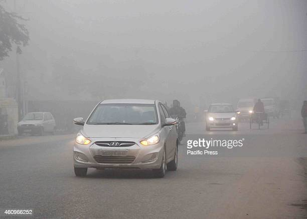 Traffic on a cold foggy and chilly morning in Allahabad on Tuesday Many people died due to a cold front in UP