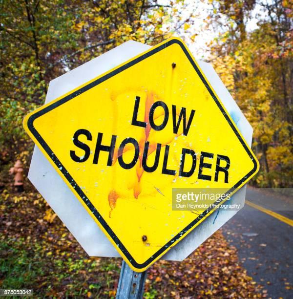 Traffic Sign - Low Shoulder