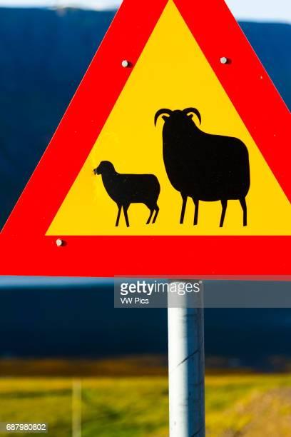 Traffic sign Seydisfjordur Iceland