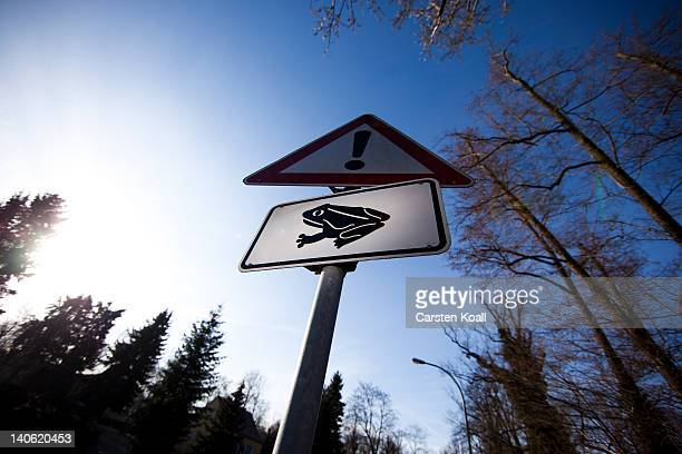 A traffic sign warning for amphibian migrations stands on a road on March 3 2012 in Potsdam Germany A so called 'frog fence' is built during spring...