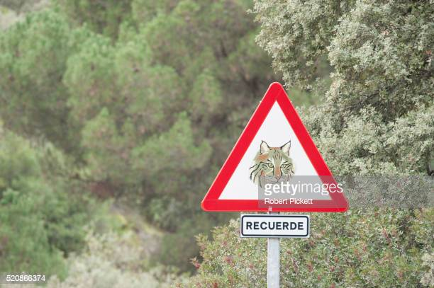 Traffic warning sign for the conservation of Spanish lynx, Spain