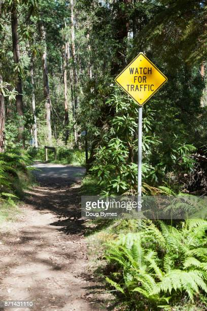Traffic warning sign in quiet forrest