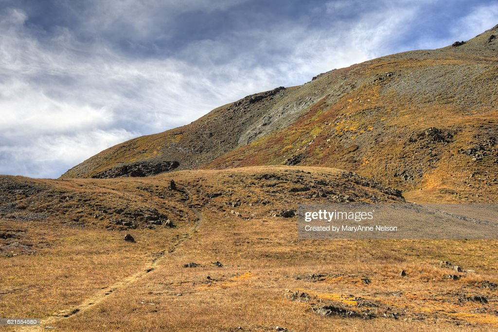 Trail above Timerline in Fall : Stock Photo