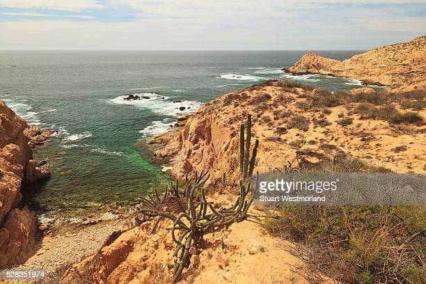 Trail Along The Coastline Starting At Chileno Bay Between Cabo San Lucas And San Jose Del Cabo; Baja California Sur Mexico