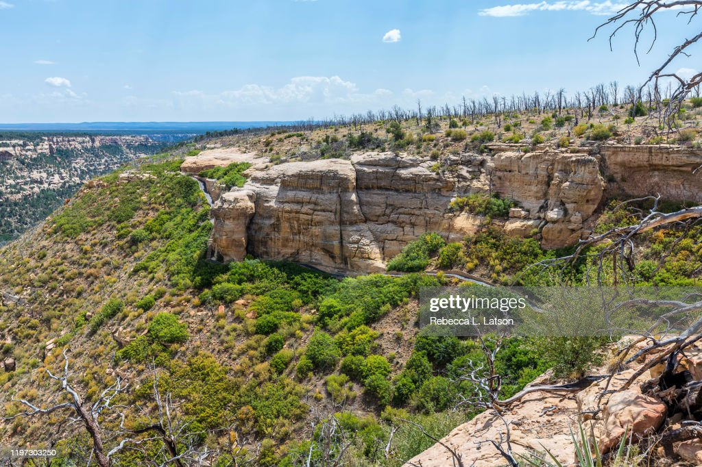 Trail And Landscape On Wetherill Mesa : Stock Photo