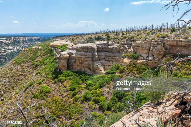 trail and landscape on wetherill mesa - mesa digital stock pictures, royalty-free photos & images