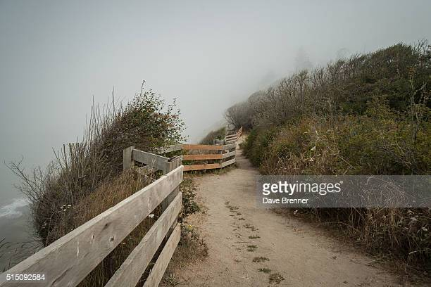 Trail, Dungeness County Park, Dungeness, Clallam County, Washington State, United States