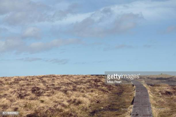 A trail lined with railway sleepers over bog land