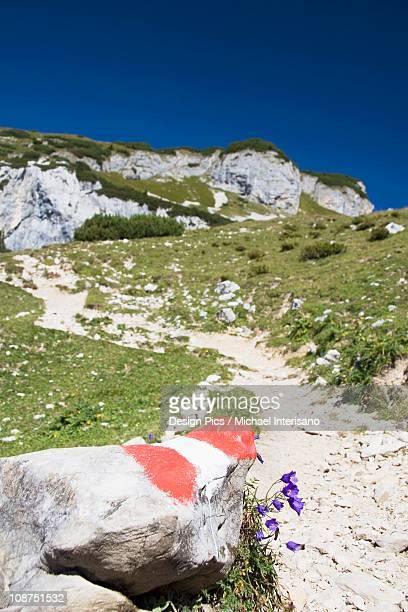 trail markings on a mountain trail - トレイル表示 ストックフォトと画像