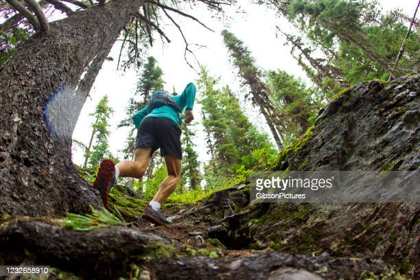 trail runner - active lifestyle stock pictures, royalty-free photos & images