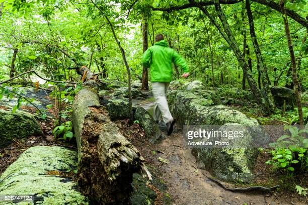 trail running hiking in great falls, virginia - mclean virginia stock pictures, royalty-free photos & images