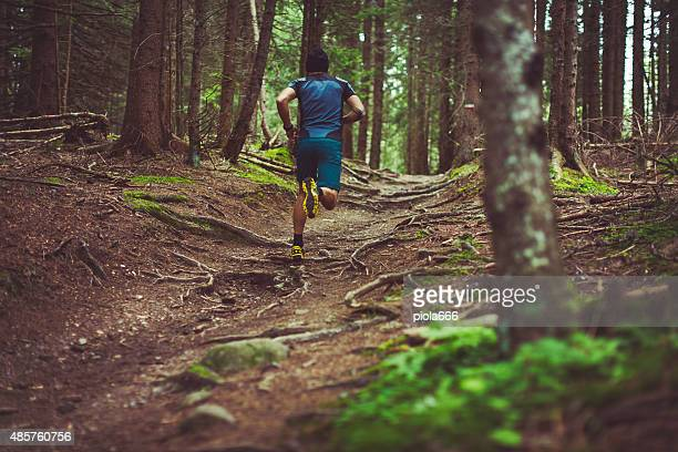La course sur sentier dans la forêt.