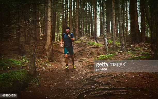 Trail running jogging in the forest