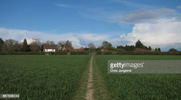 Trail Through Field to Houses
