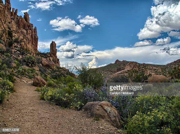 trail to balanced rock in big bend national park - big bend national park stock pictures, royalty-free photos & images