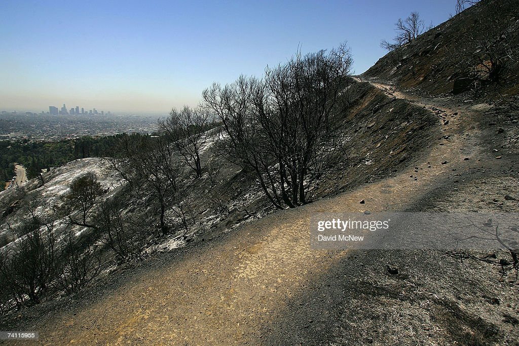 Fire Burns Over 600 Acres In Los Angeles Griffith Park : News Photo