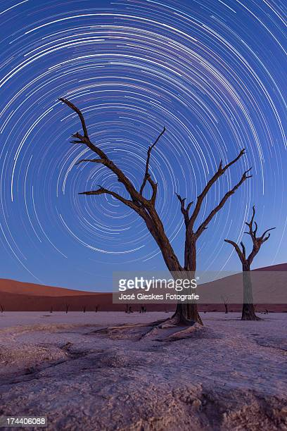 trailing stars - dead vlei namibia stock pictures, royalty-free photos & images