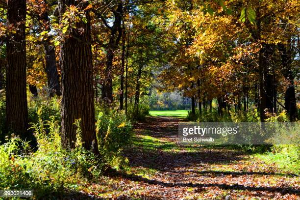 trails end