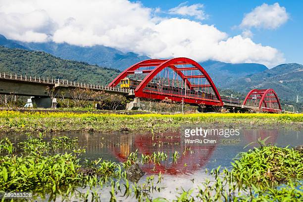 train across a m-type red bridge on the lush paddy fields - hualien county stock pictures, royalty-free photos & images