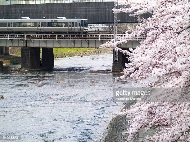 train crossing kamo river - fluss kamo stock-fotos und bilder