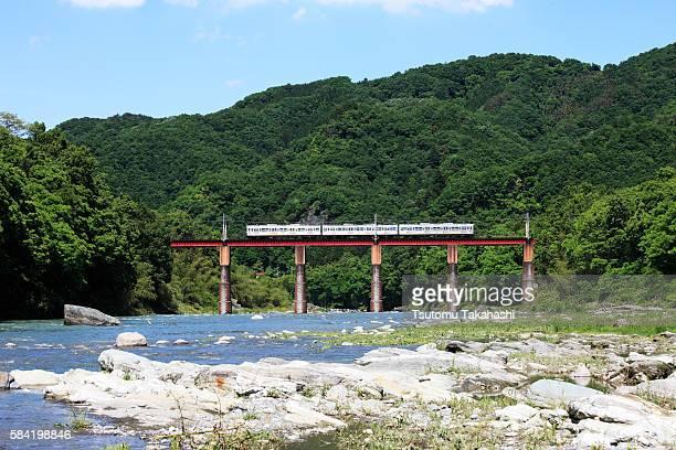 Train crossing railway bridge, Saitama Prefecture, Honshu, Japan