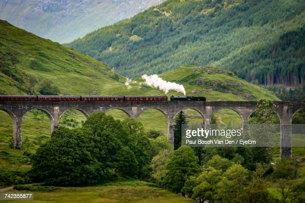 Train Crossing Viaduct By Mountains