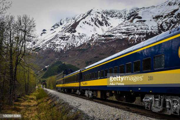 train in motion - rail transportation stock pictures, royalty-free photos & images