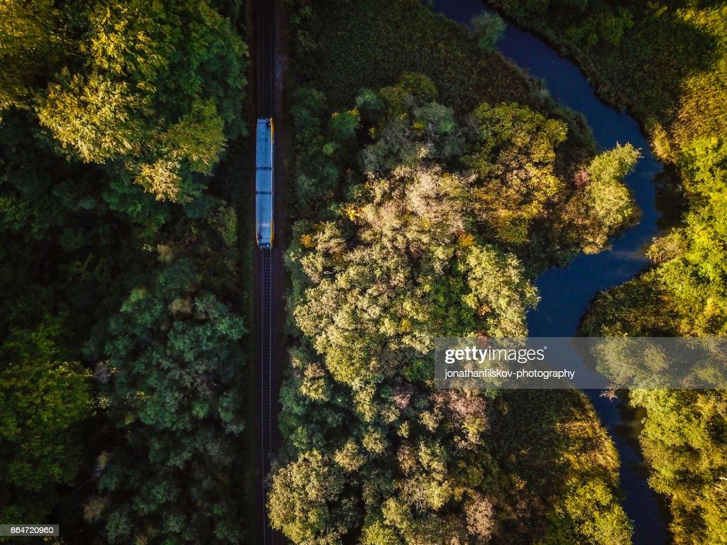 Train in nature : Stock Photo