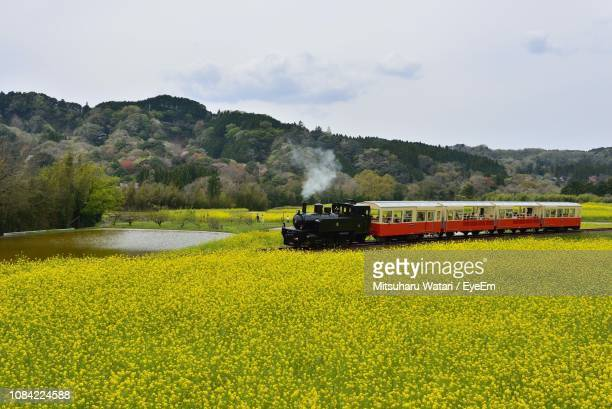 train on railroad track amidst field against sky - 千葉市 ストックフォトと画像