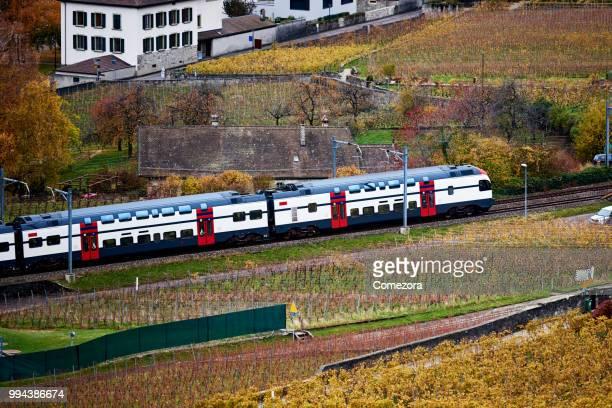 Train Pass Through Village and Vineyard Farm, Switzerland