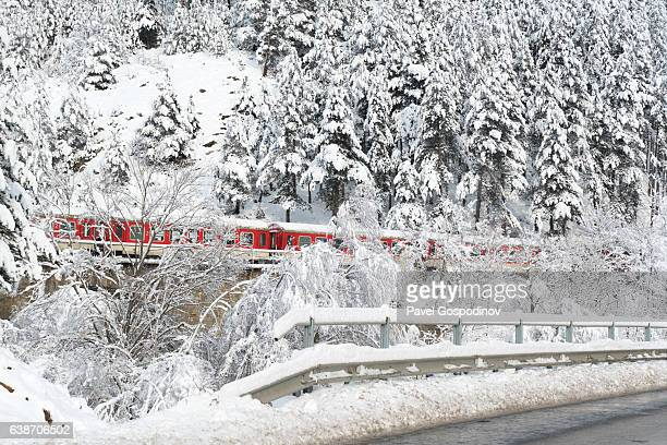 Train Passing Through A Pine Forest Covered By Snow In The Rhodope Mountains, Bulgaria
