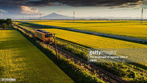 train through the countryside - aomori prefecture stock pictures, royalty-free photos & images