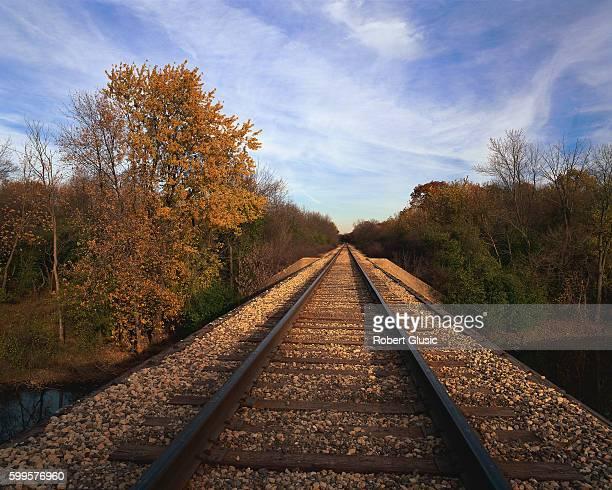 train tracks pass autumn trees - レイクフォレスト ストックフォトと画像