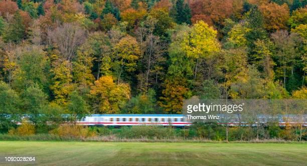 train travelling through a forest and field - image stock-fotos und bilder