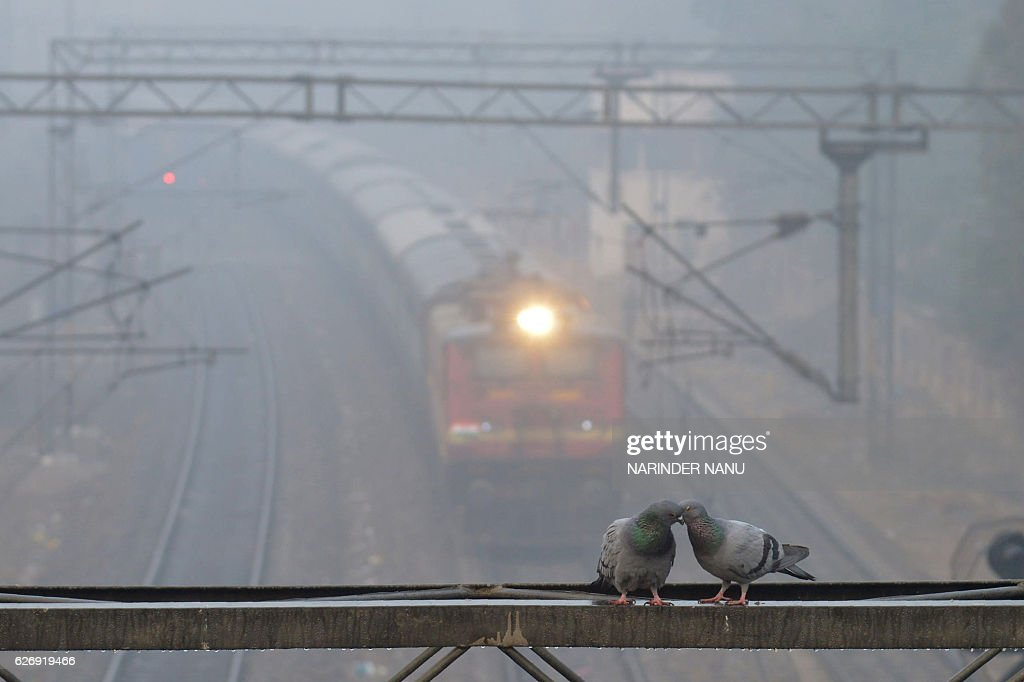TOPSHOT A train travels through dense fog at near a railway station in the Indian city of Amritsar on December 1 2016 Seasonal heavy fog and cold...