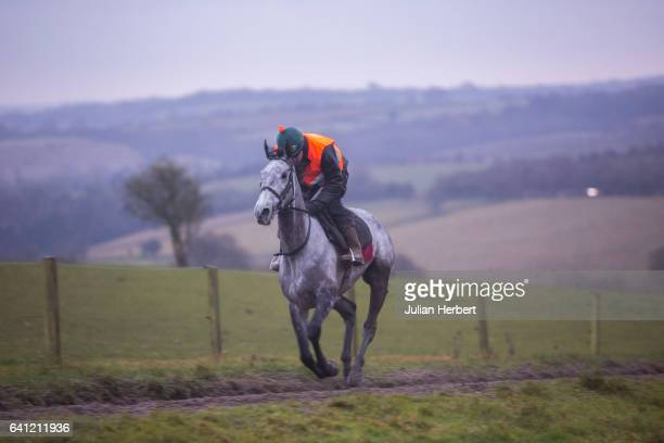 Trained by Nigel TwistonDavies Bristol De Mai gallops at the trainers stables on February 2 2017 in Gloucester England