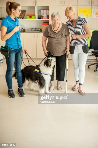 Une formation chien femme Senior aidant à maintenir la stabilité tout en marchant