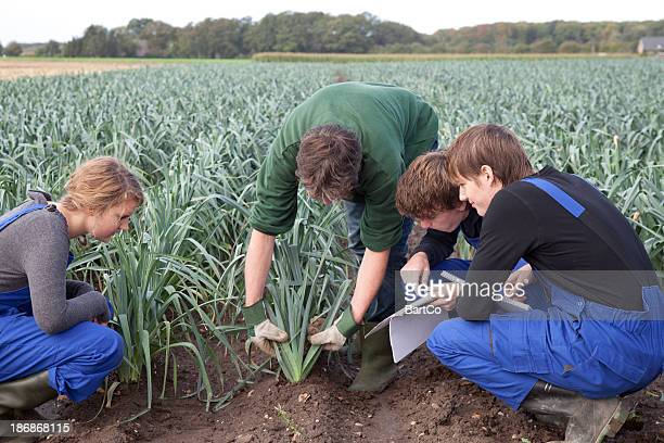 Trainee agriculture