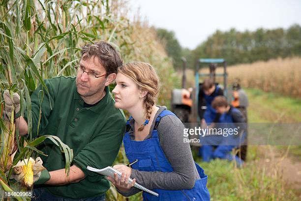 apprendista apprendimento per agricoltore - agricoltura foto e immagini stock