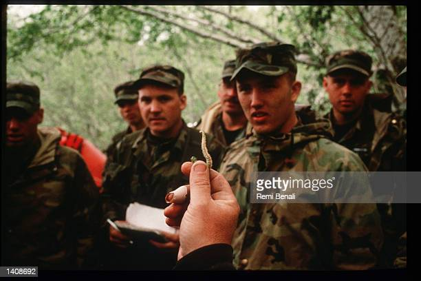 Trainees learn about edible forest plants at the US Air Force Survival Training Center September 13 1995 in Olympic National Park WA Serving as a...