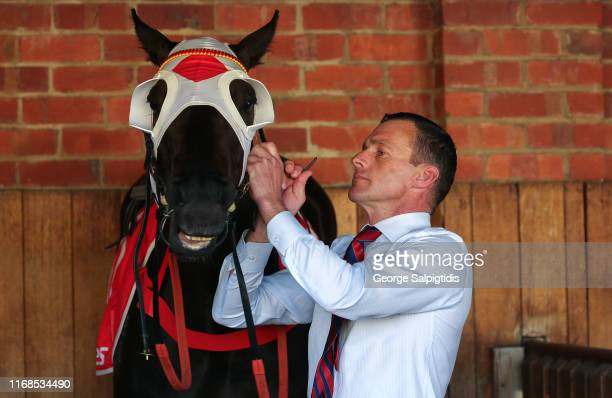Trainer Adam Trinder with Mystic Journey before Race 8 PB Lawrence Stakes during Melbourne Racing at Caulfield Racecourse on August 17 2019 in...