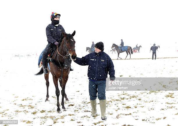 Trainer Alan King with Mille Chief at an open day day prior to The Cheltenham National Hunt Festival due to take place between March 1619 at his...