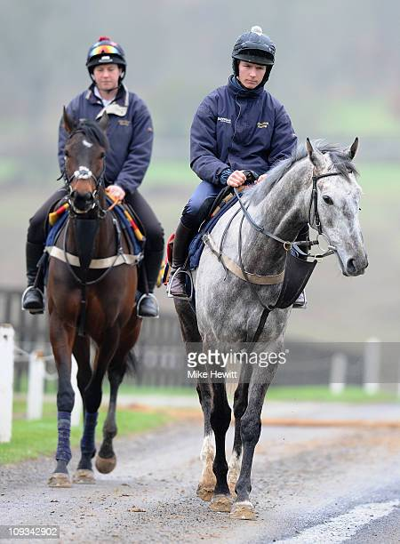 Trainer Alan King's star horses Medermit and Mille Chief head out for a gallop during an Alan King stable visit at Barbury Castle Stables on February...