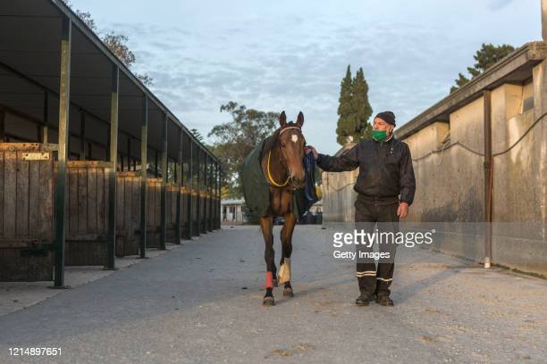 A trainer arrives with a horse at the barn before the race during competition day as Uruguay slowly returns to normal due to coronavirus outbreak at...