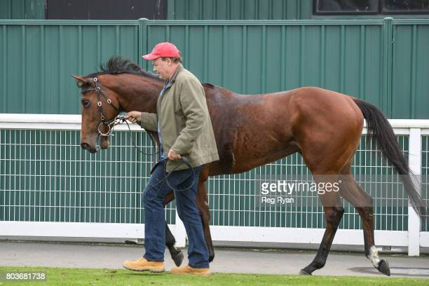 Trainer Brendan McCarthy after his horse Kailua won the 13th Beach Golf Club 3YOMaiden Plate at Geelong Synthetic Racecourse on June 30 2017 in...