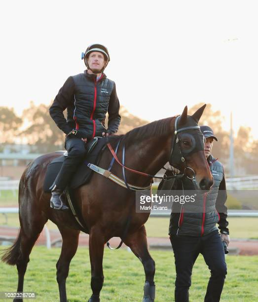 Trainer Chris Waller leads Winx ridden by Hugh Bowman after a trackwork session at Rosehill Gardens on September 13 2018 in Sydney Australia